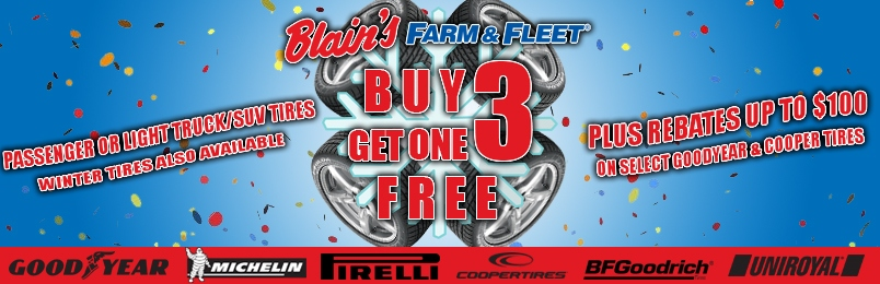 Blain S Farm Fleet Automotive Service Center Of Morton Il