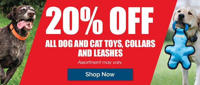 20% Off All Dog and Cat Toys, Collars and Leashe