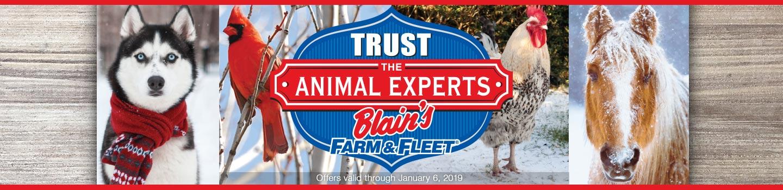 Animal Experts