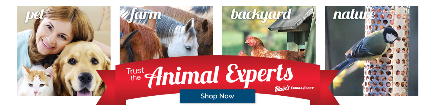 Shop the Animal Experts 2 Sale Going on Now at Blain's Farm & Fleet!