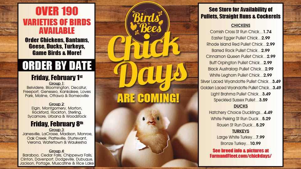 Blain's Farm & Fleet Chick Days Early Order Deadline