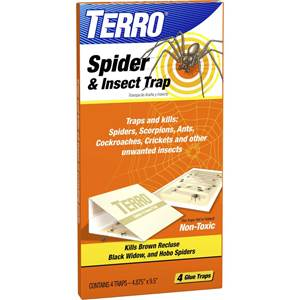 Live Insect Traps